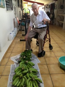 Chef Yun Fuentes' Grandfather & His Plantains in Puerto Rico (Photo courtesy of Yun Fuentes)