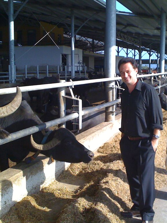 Gran Caffe L'Aquila's Ricardo Longo at a Buffalo Mozzarella Farm in Paestum (photo courtesy of Ricardo Longo)